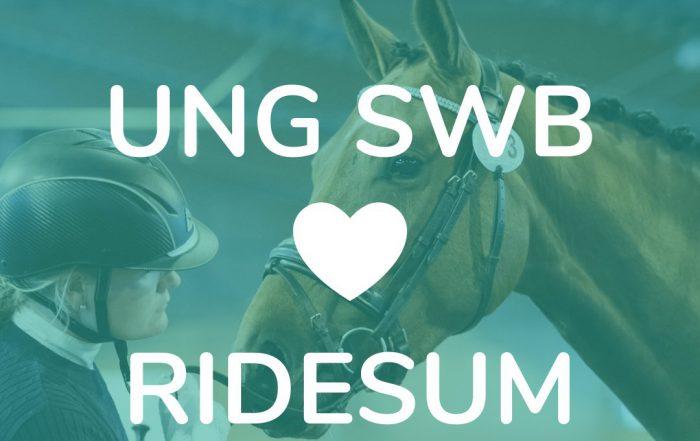 Bild: Ung SWB exteriörbedömning via Ridesum