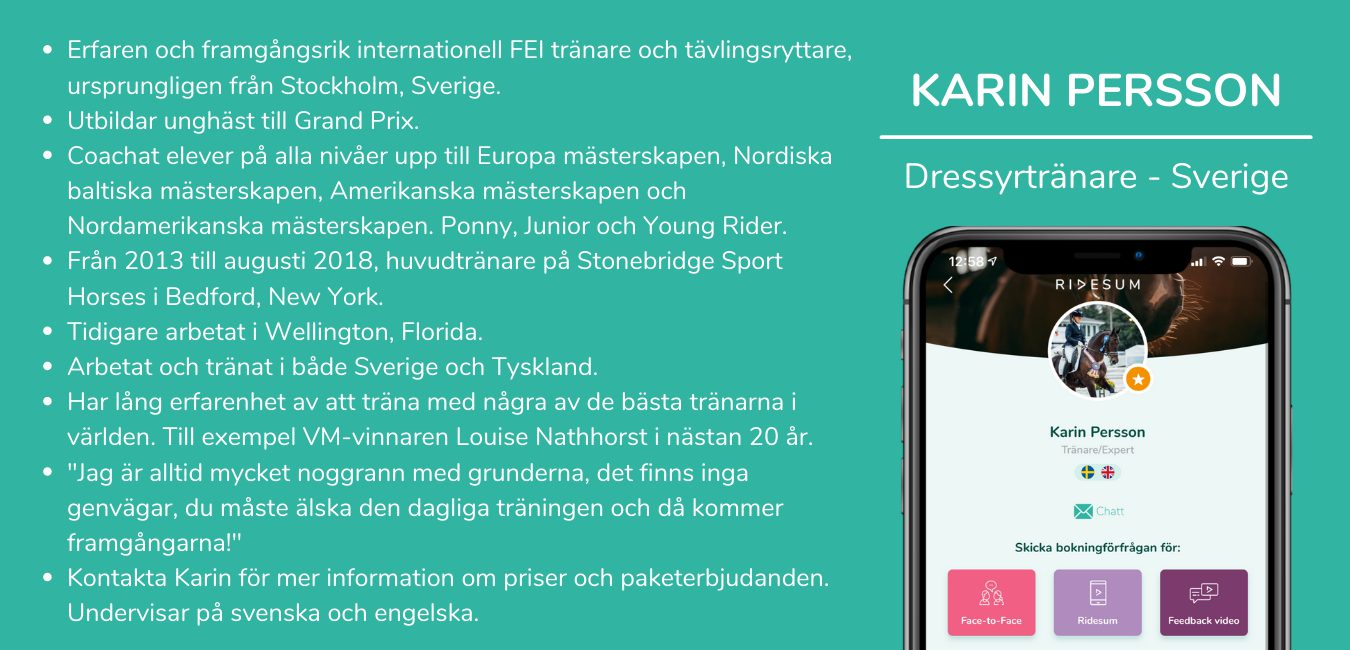 Karin Persson info